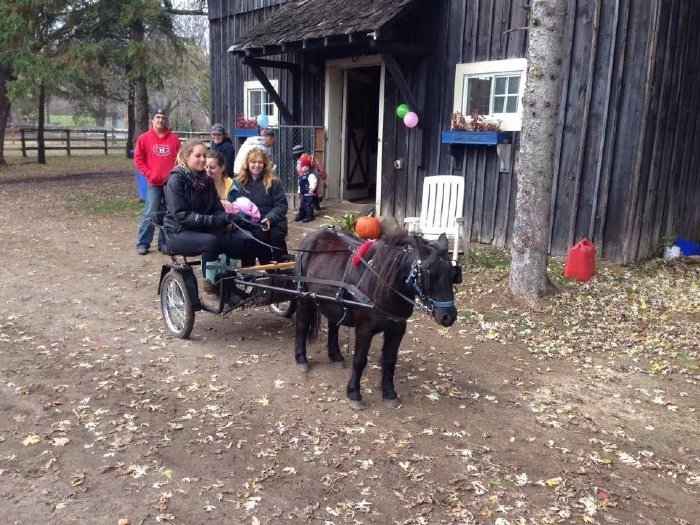 Family Day at Greystone Stables in Rigaud
